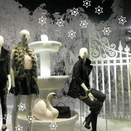 Weihnachtssterne als Schaufenster