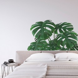Monstera illustré pour le mur